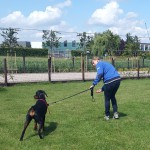 privéles hondenschool1